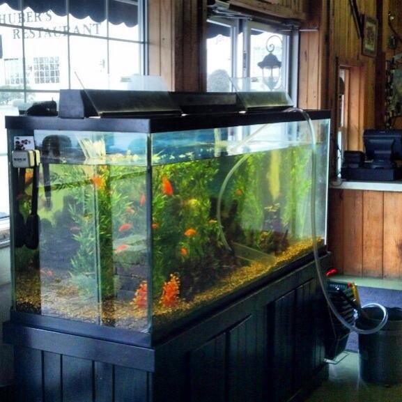 huber-farm-fish-tank